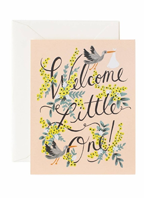 Rifle Paper Co. Welcome Little One Kart Renkli